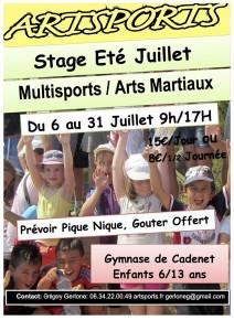 Stage d'ETE Juillet 2015